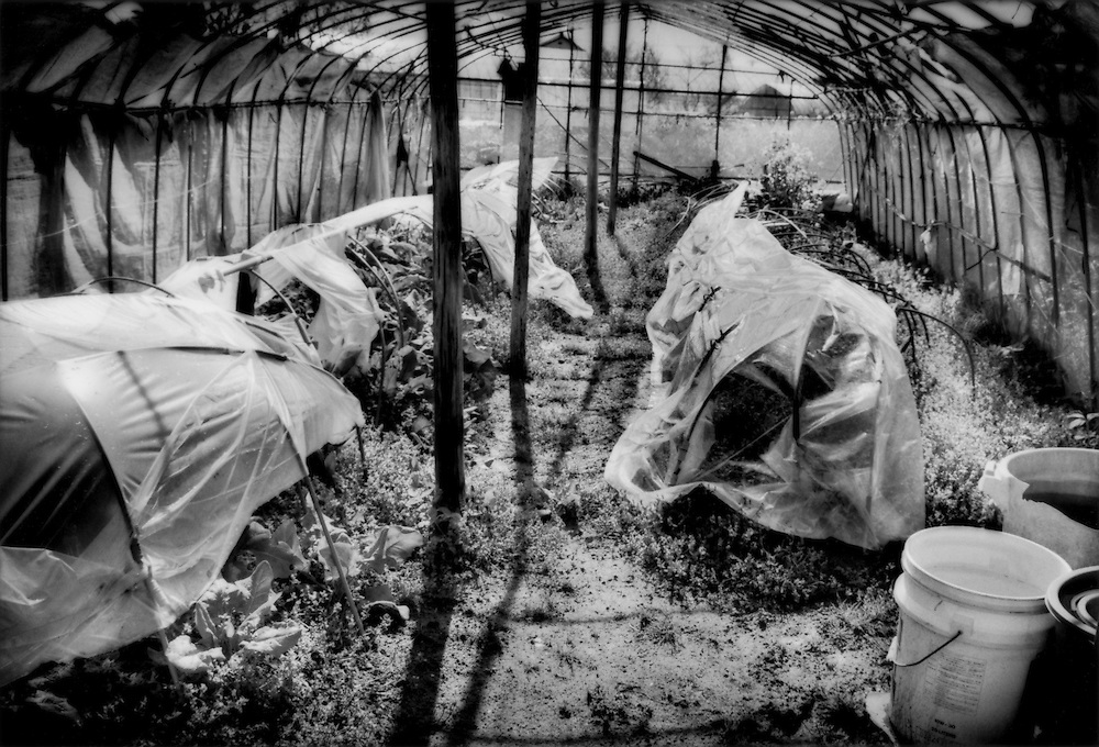 Weeds begin to overrun a greenhouse inside the 20 km (12.4 miles) nuclear no-entry zone at an evacuated farm, near Odaka, Fukushima Prefecture, Japan.  As of midnight 21 April 2011, the Japanese government declared the no-entry zone off-limits under the Disaster Countermeasures Basic Law which gives the police the power to detain anyone entering the zone for up to 30 days and impose a fine of up 100,000 JPY (US$1,200), which was exactly the risk necessary to take to make this photograph..