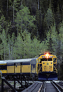 Alaska Railroad, Train, Railroad, Summer, Denali National Park, Alaska