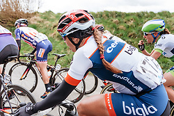 Carmen Small in the front group as the race enters it's final phase - Women's Gent Wevelgem 2016, a 115km UCI Women's WorldTour road race from Ieper to Wevelgem, on March 27th, 2016 in Flanders, Belgium.