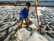 22 FEBRUARY 2017 - BAN LAEM, PETCHABURI, THAILAND: A worker picks up her baskets of harvested salt during the salt harvest in Petchaburi province of Thailand, about two hours south of Bangkok on the Gulf of Siam. Salt is collected in coastal flats that are flooded with sea water. The water evaporates and leaves the salt in large pans. Coastal provinces south of Bangkok used to be dotted with salt farms, but industrial development has pushed the salt farms down to remote parts of Petchaburi province. The harvest normally starts in early February and lasts until early May, but this year's harvest was delayed by a couple of weeks because of unseasonable rain in January that flooded many of the salt collection ponds.    PHOTO BY JACK KURTZ