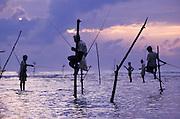 Stilit fishermen of Weligama, SW Sri Lanka