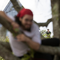 A young man hangs out in a tree as a police officer watches over protestors as they gather in the staging site prior to a Richard Spencer speech at the Phillips Center for the Performing Arts on the University of Florida campus in Gainesville, Florida on Thursday, October 18, 2017. (Alex Menendez)