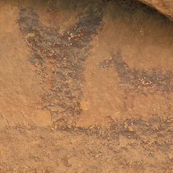 Canyonlands National Park, UT..Ancestral Puebloan pictographs in the Needles District. Moose.