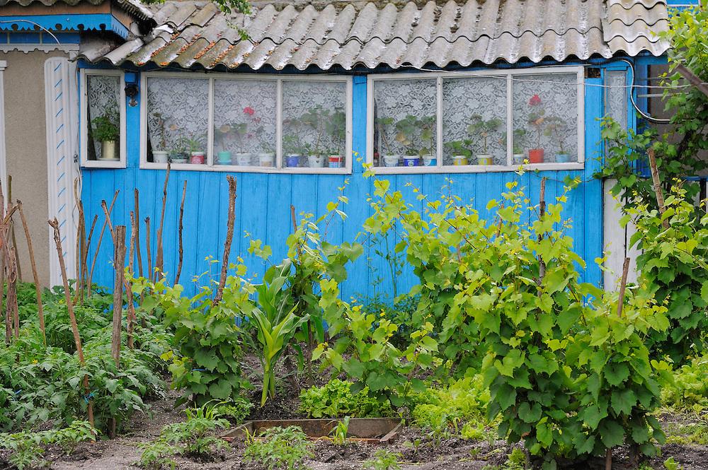 Garden, Crisan, Danube delta rewilding area, Romania
