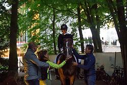Verwimp Jorinde, BEL, Tiamo<br /> Grand Prix Freestyle CDI5*- CHIO Rotterdam 2017<br /> © Hippo Foto - Sharon Vandeput<br /> 24/06/17