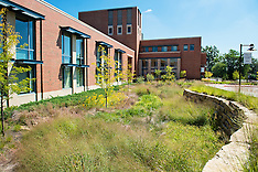 East Academic Building Rain Garden