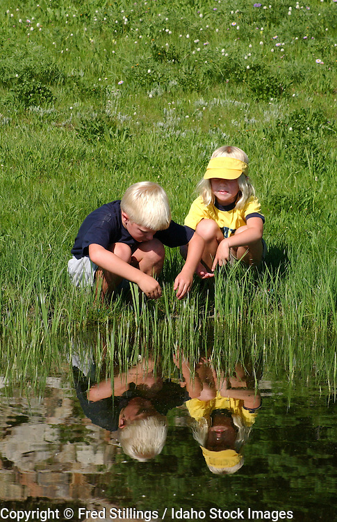 Idaho, Boise National Forest.  Boy and girl play in pond near Lake Cascade. Model Release