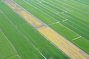 Nederland, Utrecht, Gemeente Woerden, 09-04-2014; polder Teckop, percelen weiland afgewisseld met sloten in het Groene Hart, tussen Worden en Breukelen. De weilanden zijn met mest geinjecteerd.<br /> Meadows in central Holland, the Green Hart. The pastures are injected with manure.<br /> Greenhouses and fields in the Green Heart (West-Holland).<br /> luchtfoto (toeslag op standaard tarieven);<br /> aerial photo (additional fee required);<br /> copyright foto/photo Siebe Swart.