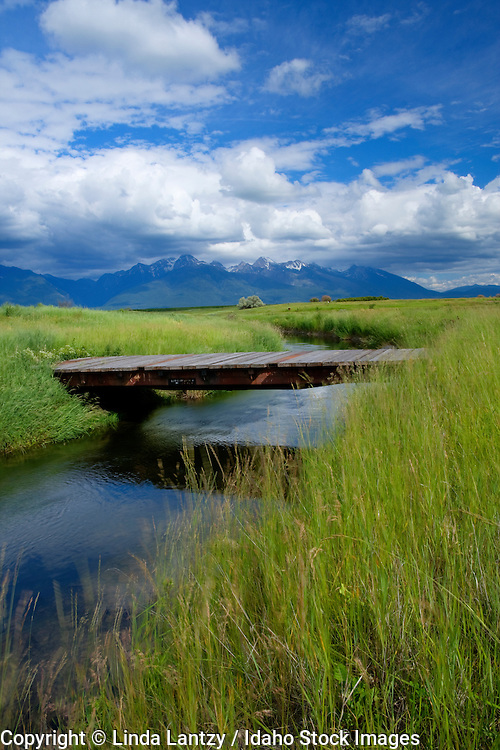 Montana, Western, St. Ignatius. An irrigation canal leads towards the Mission Mountains through windswept grasslands of the Mission Valley.