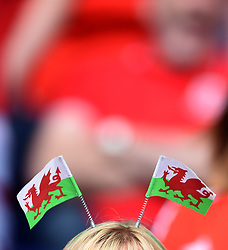 Wales fan  - Mandatory by-line: Joe Meredith/JMP - 25/06/2016 - FOOTBALL - Parc des Princes - Paris, France - Wales v Northern Ireland - UEFA European Championship Round of 16