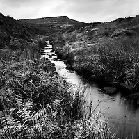 A small stream flowing through open countryside with bracken at Burbage Brook, Peak District, Derbyshire, England