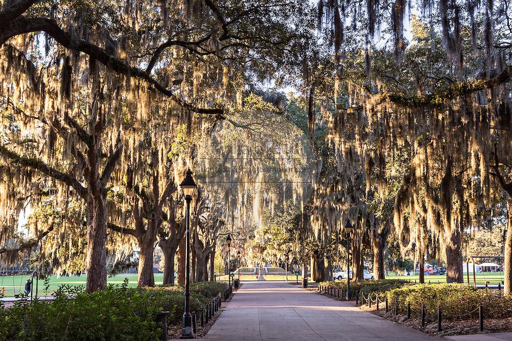 Christmas in Historic Savannah, Georgia | Richard Ellis ...