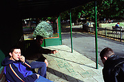 Three teenage boys smoking spliffs in a park shelter Lambeth Walk South London c.2000