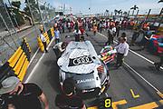 Dries VANTHOOR, BEL, Audi Sport Team WRT Speedstar Audi R8 LMS <br /> <br /> 65th Macau Grand Prix. 14-18.11.2018.<br /> SJM Macau GT Cup - FIA GT World Cup. <br /> Macau Copyright Free Image for editorial use only