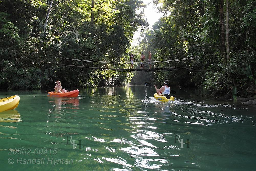 Ecotourists paddle their kayaks up Rio Agujitas river to explore rainforest and riparian habitat bordering Corcovado National Park on the Osa Peninsula; Drake Bay, Costa Rica.