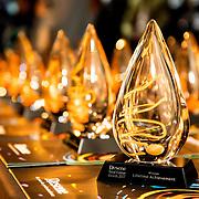 Resene Colour Awards 2017 - Awards