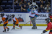 KELOWNA, CANADA - FEBRUARY 02:  Mini Minor Game at the Kelowna Rockets game on February 02, 2018 at Prospera Place in Kelowna, British Columbia, Canada.  (Photo By Cindy Rogers/Nyasa Photography,  *** Local Caption ***