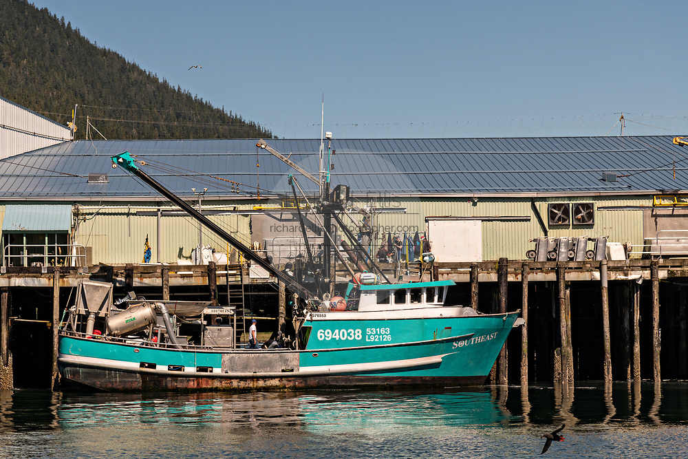A fishing boat tied to the Icicle Seafoods dock in the tiny village of Petersburg on Mitkof Island along the Wrangell Narrows in Frederick Sound on Mitkof Island, Alaska. Petersburg settled by Norwegian immigrant Peter Buschmann is known as Little Norway due to the high percentage of people of Scandinavian origin.