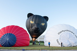 © Licensed to London News Pictures. 29/07/2019; Bristol, UK. A black cat balloon. Press preview event for the 41st Bristol International Balloon Fiesta 2019 which will take place from 08 - 11 August 2019. For the preview up to 25 hot air balloons will take off from Filton Airfield, next to the Brabazon Hangar which is the site of a proposed new YTL Arena, and Aerospace Bristol to play homage to the 50th anniversary of Concorde. The Bristol International Balloon Fiesta attracts hundreds of thousands of visitors and this year the Fiesta will be celebrating Icons of Bristol and look to highlight some of the things that make up the home of the International Balloon Fiesta. The event has joined forces with Aerospace Bristol to honour one of the city's most famed creations, Concorde and Aardman Animations who are celebrating the 30th anniversary of Wallace and Gromit. Over the course of four days, the Bristol International Balloon Fiesta will play host to more than 100 colourful hot air balloons of all sizes and shapes. Special shapes are an iconic part of the Fiesta and the event kicks off with its now traditional special shapes launch on Thursday evening of 08 August. Photo credit: Simon Chapman/LNP.