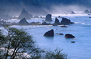 Sea stacks and mist near Trinidad, Humboldt County, California.