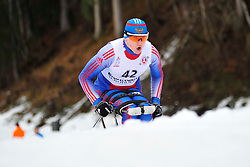 DAVIDOVICH Aleksandr, RUS at the 2014 IPC Nordic Skiing World Cup Finals - Long Distance