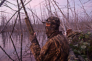 A waterfowl hunter and his springer spaniel among dead standing timber while hunting at dawn.