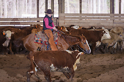 April 29 2017 - Minshall Farm Cutting 1, held at Minshall Farms, Hillsburgh Ontario. The event was put on by the Ontario Cutting Horse Association. Riding in the 35,000 Non-Pro Class is Laurie Reed on Big Time Moves owned by the rider.