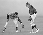 A possum ran out into the field before a baseball game at Dodger Stadium in 1978 and a couple of outfielderson the opposing team, The Giants, tried unsuccessfully to field him.
