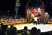 Nederland, Nijmegen, 1-5-2005Circus Herman Renz geeft een show met olifanten.Foto: Flip Franssen/Hollandse HoogteEditie:Rijk van  Nijmegen