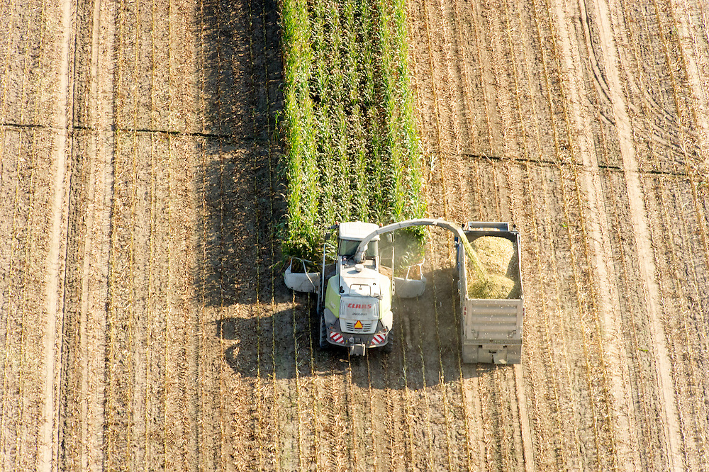 Aerial of harvesting corn silage in Ridgley, Maryland, USA