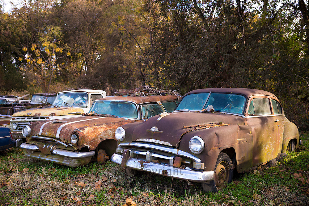 Americana - Plymouth and Pontiac limos in graveyard of abandoned rusty old American automobiles, MIssissippi, USA