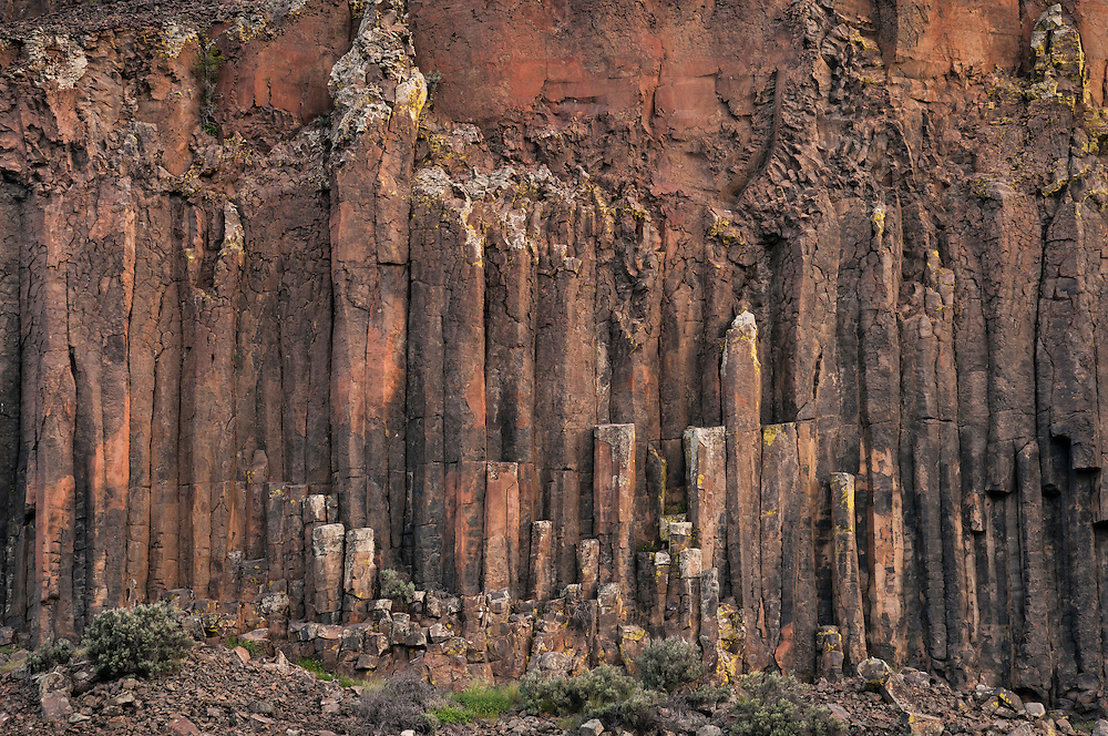 Columnar basalt at Steamboat Rock State Park, eastern Washington.