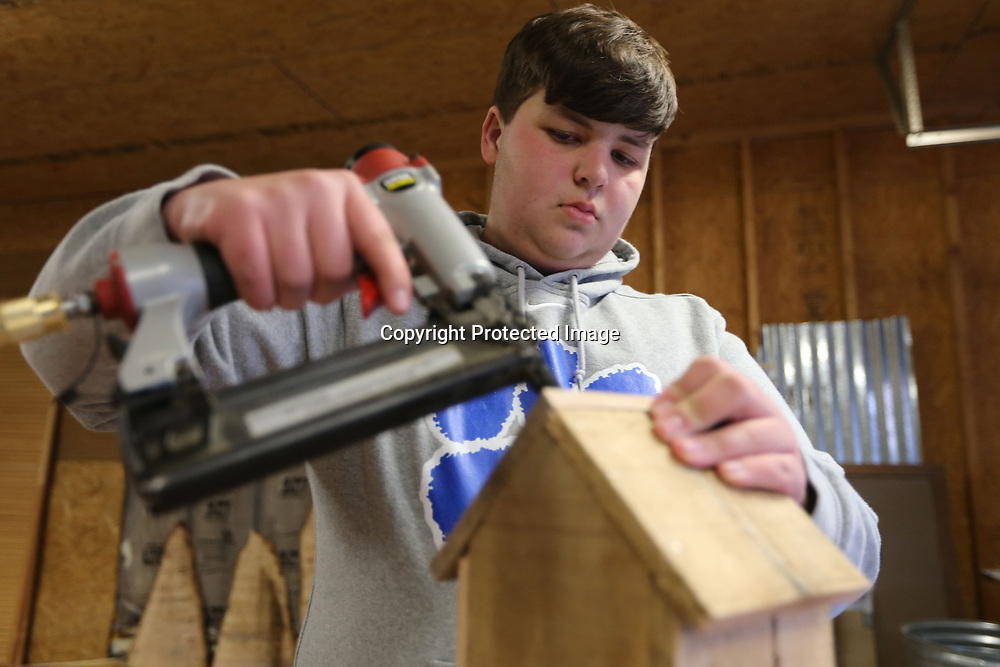 Bryce uses his pneumatic brad nailer to secure the roof onto his birdhouse. He uses a lot of wood from pallets in his projects depending on the size of the job. The hosue is made from pallet wood.
