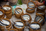 Luang Prabang, Laos. River fish in the morning food market.