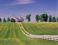 Manchester Horse farm, Lexington, Kentucky<br /> (Editorial Use Only) (Not Property Released)