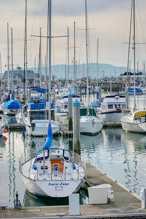 Marina on Bellingham Bay, Bellingham Washington USA