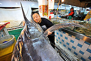QINGDAO, CHINA - SEPTEMBER 12: (CHINA OUT) <br /> <br /> Fisherman Catches Over 300 Kilograms Swordfish<br /> <br /> Shi Donglei, owner of a wild seafood supermarket, poses with a 310-kilogram weight swordfish on September 12, 2015 in Qingdao, Shandong Province of China. A fisherman caught a swordfish on Friday in Yellow Sea which weighted 310 kilograms and was in 4.1 meters long. The swordfish has carried to a seafood supermarket in Qingdao City. <br /> ©Exclusivepix Media