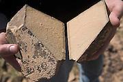 Physical mechanical desert weathering rock split in two