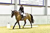 25 - 20th Dec - Evening Dressage