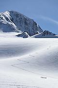 Climbers ascending Similaun Peak in the Alps on the Austria/Italy border.