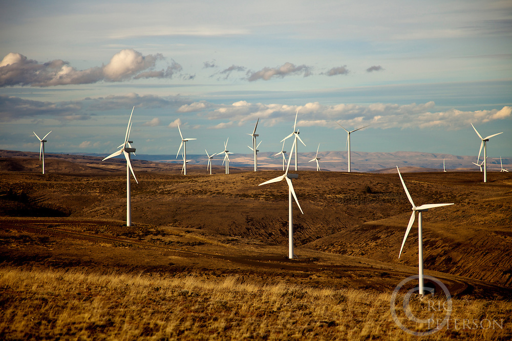 Wind turbines at wind farm in eastern Washington