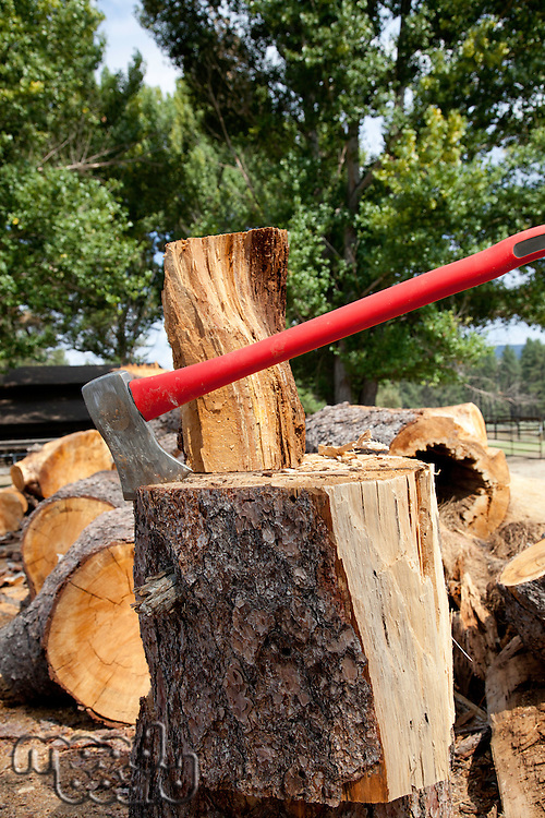 Axe in log stump
