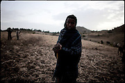 "A young shepherd lead the family's cows. North West of Ethiopia, on friday, Febrary 13 2009.....In a tangled mingling of tradition and culture, in the normal place of living, in a laid-back attitude. The background of Ethiopia's ""child brides"", a country which has the distinction of having highest percentage in the practice of early marriages despite having a law that establishes 18 years as minimum age to get married. Celebrations that last days, their minds clouded by girls cups of tella and the unknown for the future. White bridal veil frame their faces expressive of small defenseless creatures, who at the age ranging from three to twelve years shall be given to young brides men adults already...To protect the identities of the recorded subjects names and specific places are fictional."