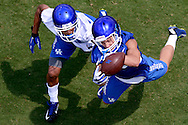 Scenes from the 2015 Kentucky Football Fan Day.<br /> <br /> Photo by Elliott Hess | UK Athletics