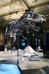 15.03.2016, Museum fuer Naturkunde, Berlin, GER, Naturkundemuseum Berlin, im Bild Das weltweit einmalige Skelett des (Tyrannosaurus rex, T. rex), Tristan - Otto // Exhibits in the Natural History Museum Museum fuer Naturkunde in Berlin, Germany on 2016/03/15. EXPA Pictures © 2016, PhotoCredit: EXPA/ Eibner-Pressefoto/ Schulz<br /> <br /> *****ATTENTION - OUT of GER*****