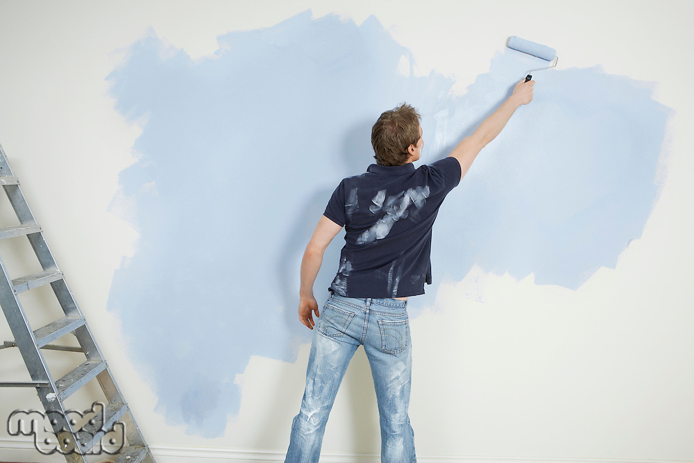 Man painting wall back view