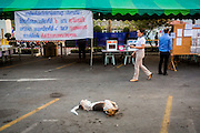"01 FEBRUARY 2014 - BANGKOK, THAILAND: A dog rolls around in front of a polling place while an elections worker prepares to open the polls in Bangkok. Thais went to the polls in a ""snap election"" Sunday called in December after Prime Minister Yingluck Shinawatra dissolved the parliament in the face of large anti-government protests in Bangkok. The anti-government opposition, led by the People's Democratic Reform Committee (PDRC), called for a boycott of the election and threatened to disrupt voting. Many polling places in Bangkok were closed by protestors who blocked access to the polls or distribution of ballots. The result of the election are likely to be contested in the Thai Constitutional Court and may be invalidated because there won't be quorum in the Thai parliament.    PHOTO BY JACK KURTZ"
