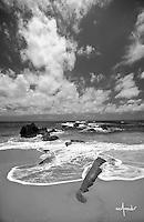 A rocky sea