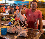 Selling chickens at Tomohon extreme market, Minahasa, north Sulawesi, Indonesia.