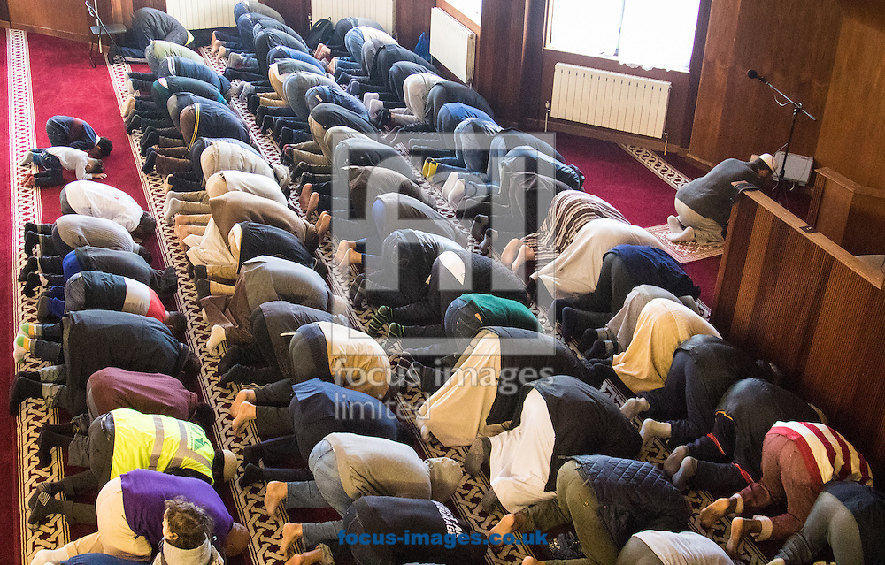 Muslim men pray, pictured during a 'Visit My Mosque' day at Finsbury Park Mosque, Stoke Newington<br /> Picture by Paul Davey/Focus Images Ltd +447966 016296<br /> 07/02/2016